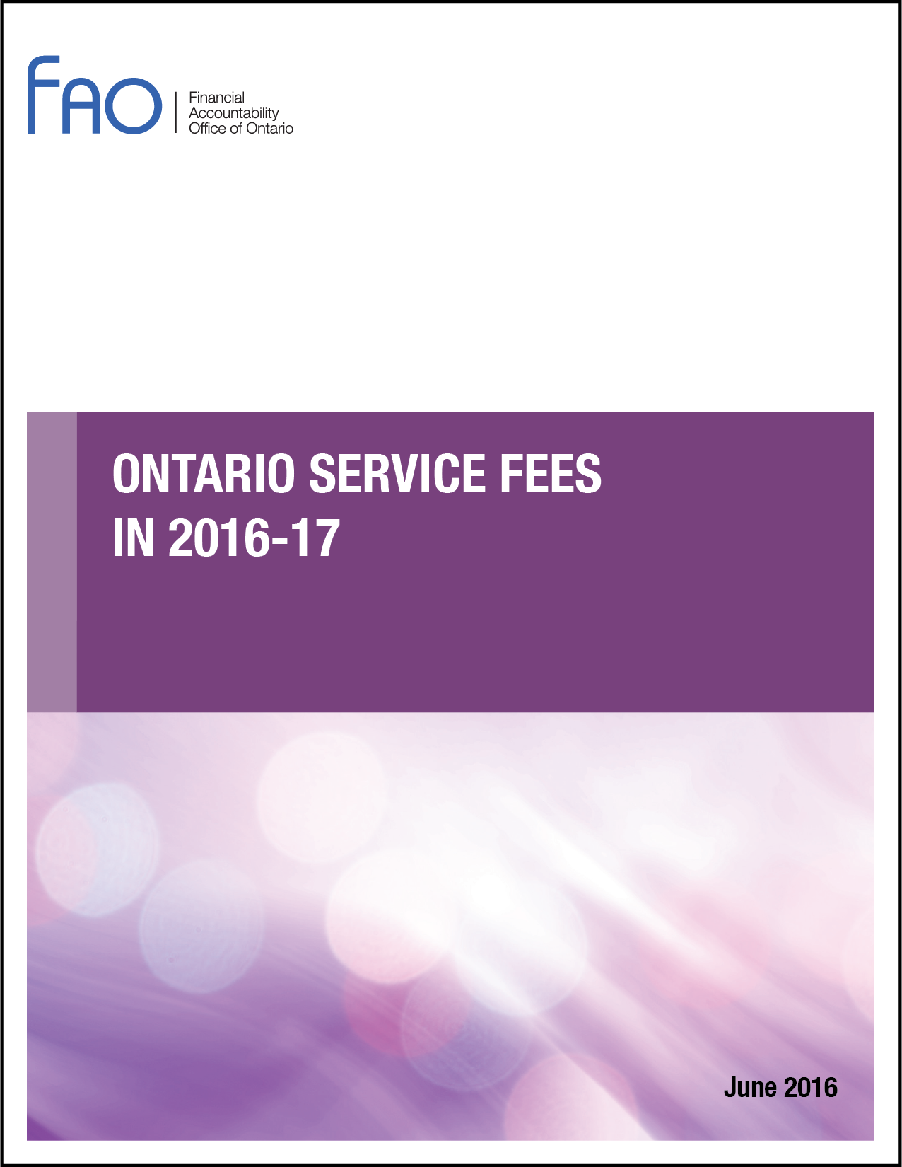 Ontario Service Fees in 2016-17